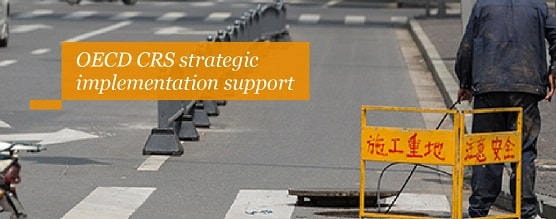 OECD CRS strategic implementation support